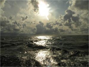 Rejs sierpniowy 2014. Rejsy stażowe po Bałtyku.
